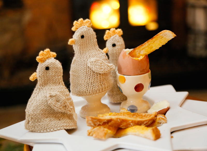 Chick Egg Cosy Knitting Kit - Click Image to Close